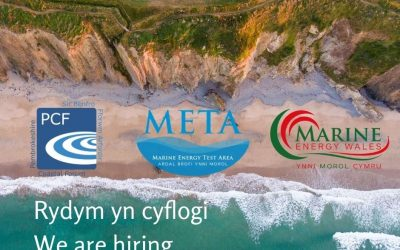 WE ARE HIRING – META PROJECT DELIVERY MANAGER